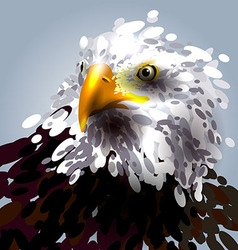 the eagles head vector image