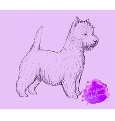 Dog on a pink background vector