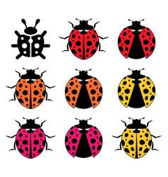 ladybirds flat symbols vector image