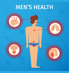 men s health flat whole body vector image