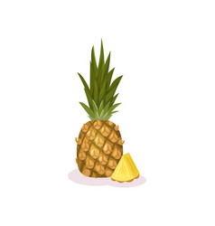 whole and small slice of ripe pineapple exotic vector image