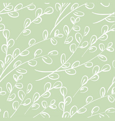 willow catkins branches hand drawn pattern vector image