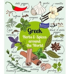 Greek herbs and spices vector image