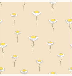 pattern with chamomile vector image