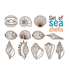 sea shell line icons vector image