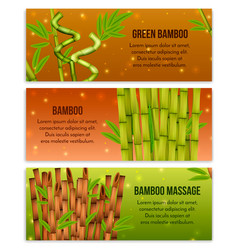 Bamboo banners set vector
