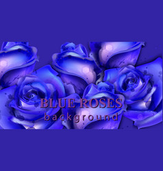 blue watercolor roses background beautiful vector image