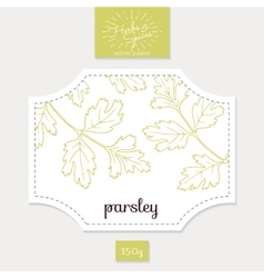 Product sticker with hand drawn parsley leaves vector image