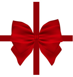 red gift bow of ribbon isolated vector image