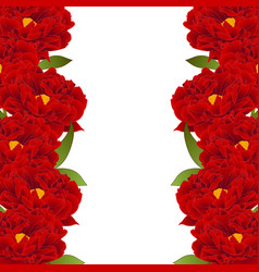 Red peony flower border vector
