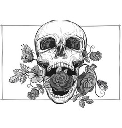screaming skull with roses vector image