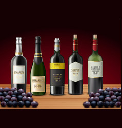 Set of wine bottles and grapes vector