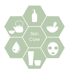 Skincare concept vector image vector image