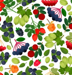 Berries Pattern vector image