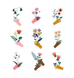 collection female hands holding bunches of vector image