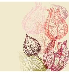Floral background herbal set vector