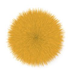 Fluffy hair ball vector