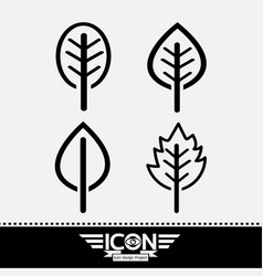 leaf line icon vector image
