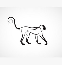 monkey design on white background wild animal vector image
