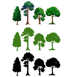 Set of different tree vector