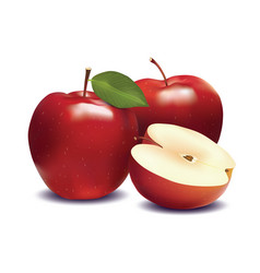 red apple and slice isolated on white vector image vector image