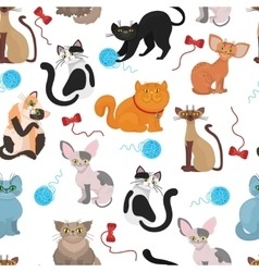 Fur cats pattern background vector image