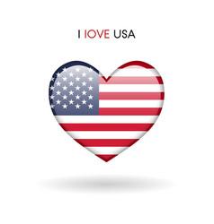 love usa symbol flag heart glossy icon vector image