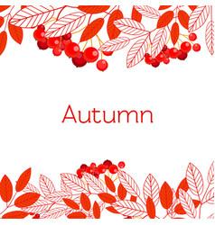 Autumn frame with branches mountain ash vector