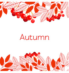 autumn frame with branches of mountain ash vector image