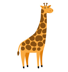 giraffe cartoon tall giraffe character vector image