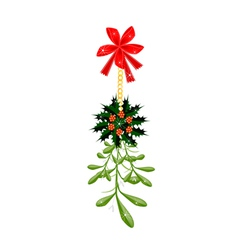 Green Mistletoe and Christmas Holly with A Red Bow vector