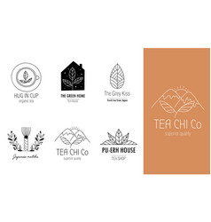hand drawn tea logo set in doodle style vector image
