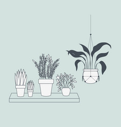 houseplants in macrame hangers and swing vector image