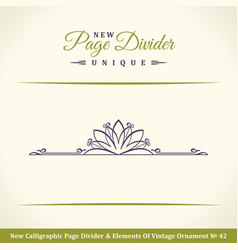 new calligraphic page dividers and elements of vector image
