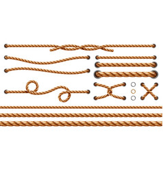 set isolated straight ropes and tied strings vector image