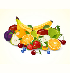 set of fruits organic fruits vector image