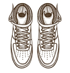 Two boots laced vector