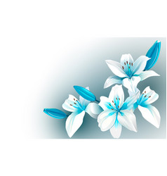 White and blue blooming flowers vector
