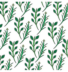 branches plant floral decoration pattern vector image