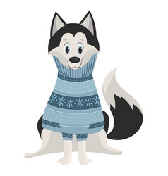 cartoon husky cute husky in a sweater vector image