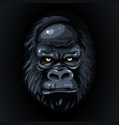 Drawing realistic black face gorilla yellow eyes vector