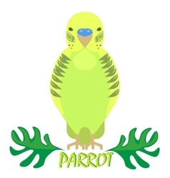 Parrot isolated front view on white Green bird vector
