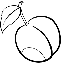 plum fruit for coloring book vector image vector image