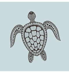 Zentangle stylized turtle Hand Drawn aquatic vector image vector image