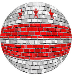 Ball with washington dc flag vector