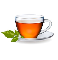 Cup of tea with leaves vector