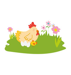 Hen chicken and eggs flowers grass farm animal vector
