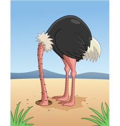 Ostrich hiding head in sand vector