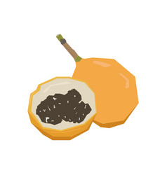 Pair passion fruits vector