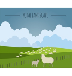 Rural landscape graphic template vector